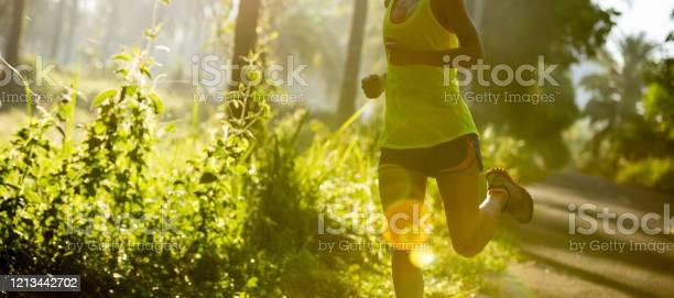 Junge Fitnessfrau Läuft Am Morgen Tropischen Waldweg Stockfoto und mehr Bilder von Athlet
