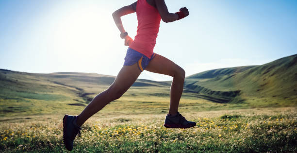 Young fitness woman trail runner running on high altitude grassland stock photo
