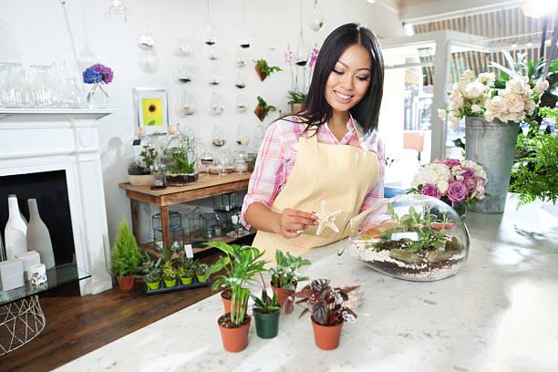 young florist arbeiten auf terrarium in ihrem retail flower shop - terrarienpflanzen stock-fotos und bilder