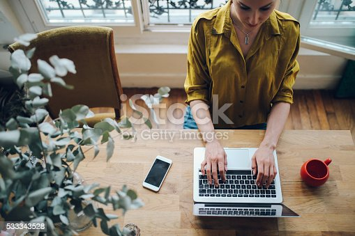 istock Young freelancer woman working in her Parisian apartment 533343528