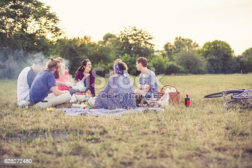 Group of people sitting together outdoors and having fun. Young friends enjoying picnic at the park.
