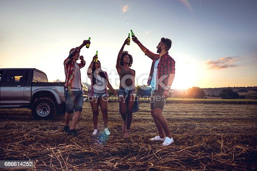 istock Young friends enjoying the freedom on a Car Trip over a country offroad 686614252