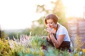 istock Young gardener in garden smelling flower, sunny nature 514521458