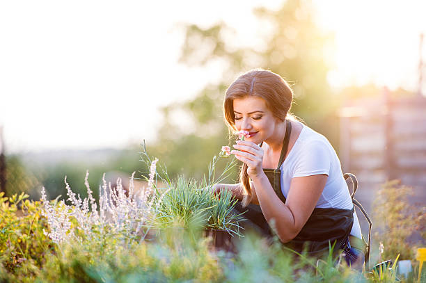 young gardener in garden smelling flower, sunny nature - scented stock photos and pictures