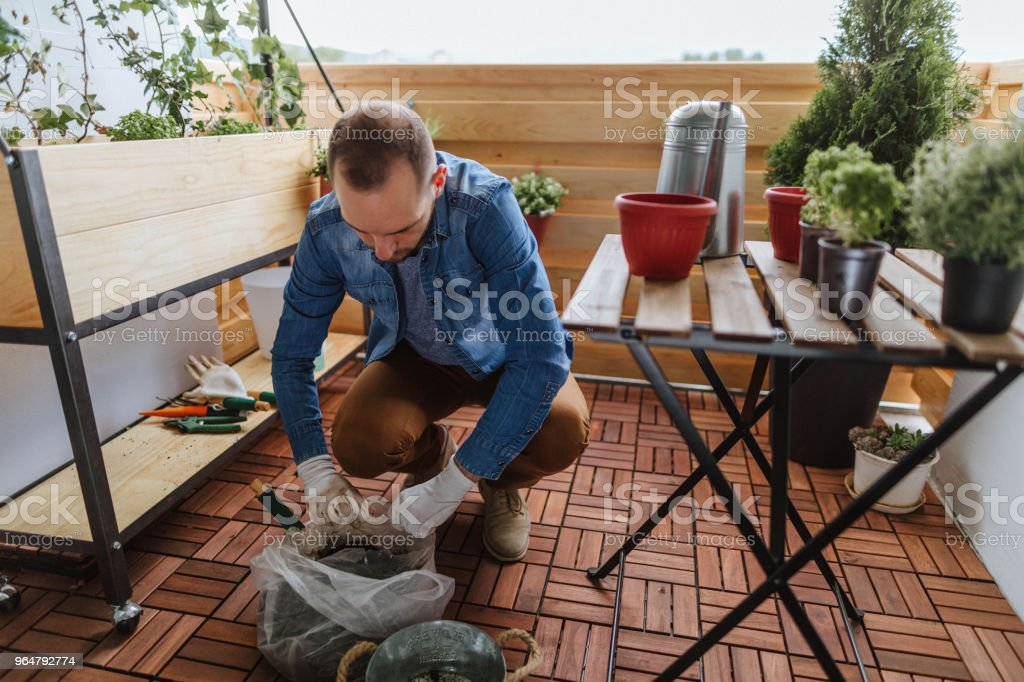 Young gardener royalty-free stock photo