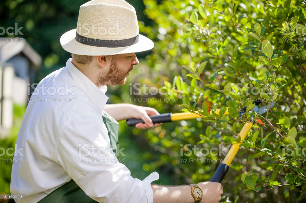 young gardener with a professional tools and equipment stock photo