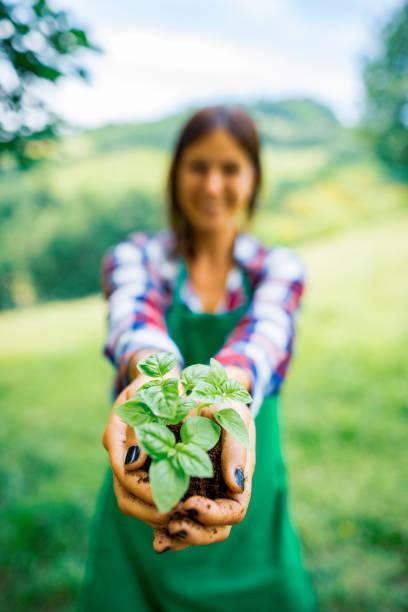 Junge Gärtner Frau hält eine Pflanze – Foto