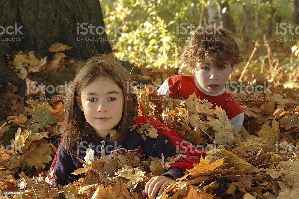Giovane ragazza e ragazzo foto stock royalty-free
