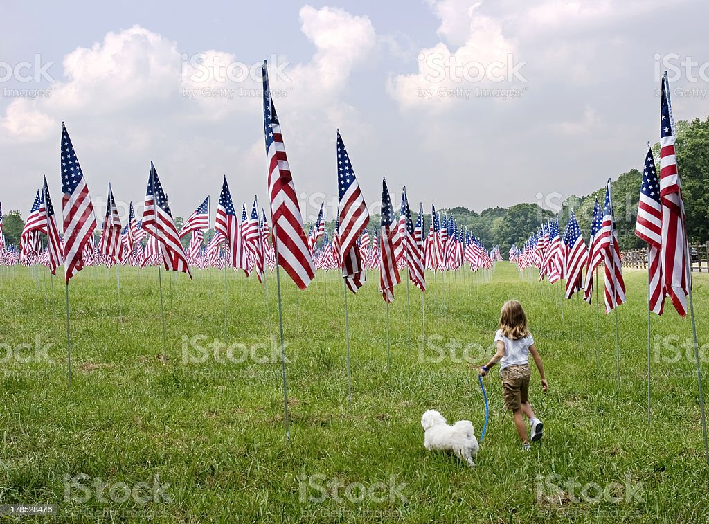 Young girl and dog in field of flags stock photo