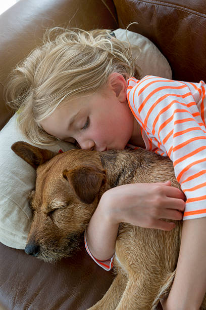 Young girl and her dog cuddling at home picture id489698616?b=1&k=6&m=489698616&s=612x612&w=0&h=t163 ugkkab7tfivtdbdey07qvbzophyhfsjoxzuigo=