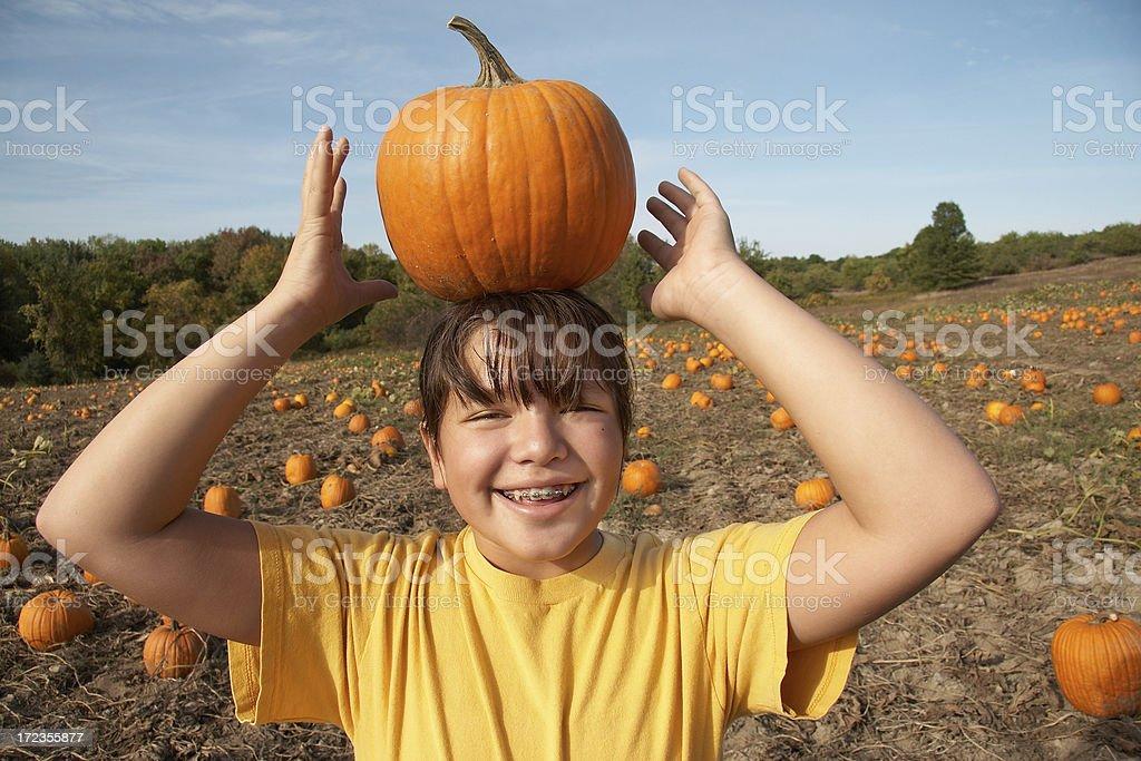 young girl contabilización de calabaza en la cabeza foto de stock libre de derechos