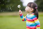 young girl blowing dandelion in the summer garden morning