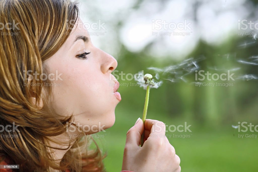 Young girl blowing dandelion. royalty free stockfoto