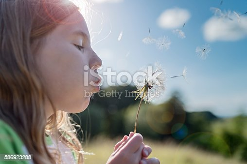 Candid portrait of a young girl, 11 years old blowing dandelion seeds and making a wish. Backlight with a very shallow depth of field, with the point of focus on the dandelion head, Colour, horizontal with some copy space.