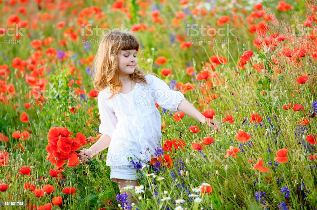 Young Girl collecting red wild flowers outdoors stock photo