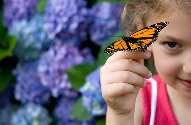 Young girl finding beauty in monarch butterfly on her finger picture id136276480?b=1&k=6&m=136276480&s=612x612&w=0&h=wdubg7l8ozesjxz7qj55yp8lr0upqbsp zfdhwjalgc=