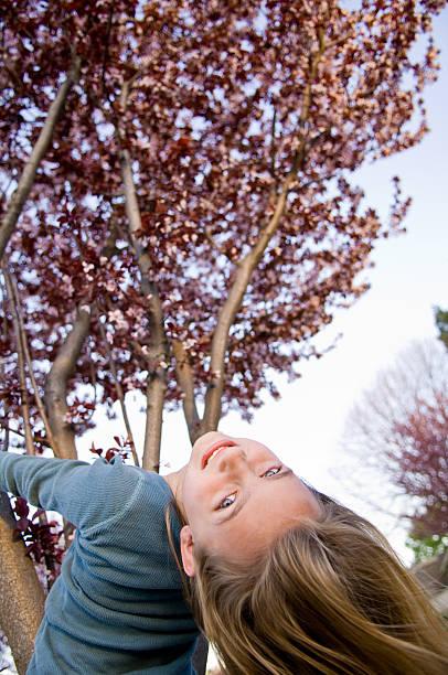 junges mädchen hängen von der kirschbaum in blüte. - mark tantrum stock-fotos und bilder