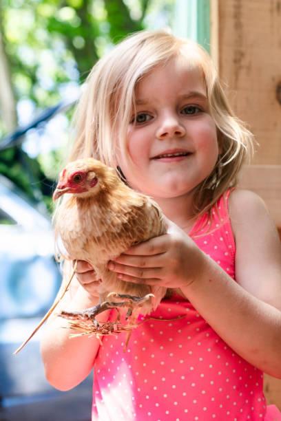 Young Girl Holding a Bantam Hen – zdjęcie