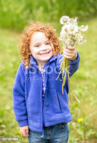 istock Young Girl Holding Bouquet of Fuzzy Dandelions 537451468