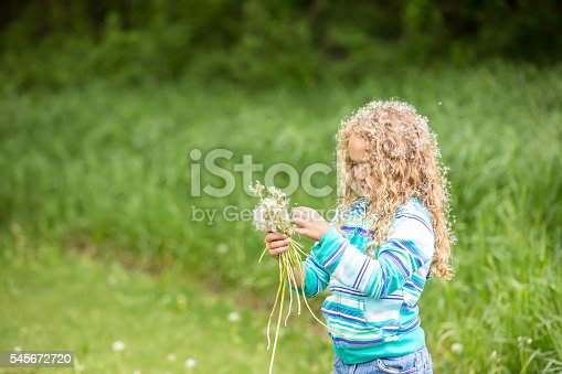 istock Young Girl Holding Bouquet of Fuzzy Dandelions 545672720