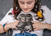 A young girl is sitting, holding and cuddling with two baby kittens.  The young girl is smiling and focused, looking at the kittens in her hands.