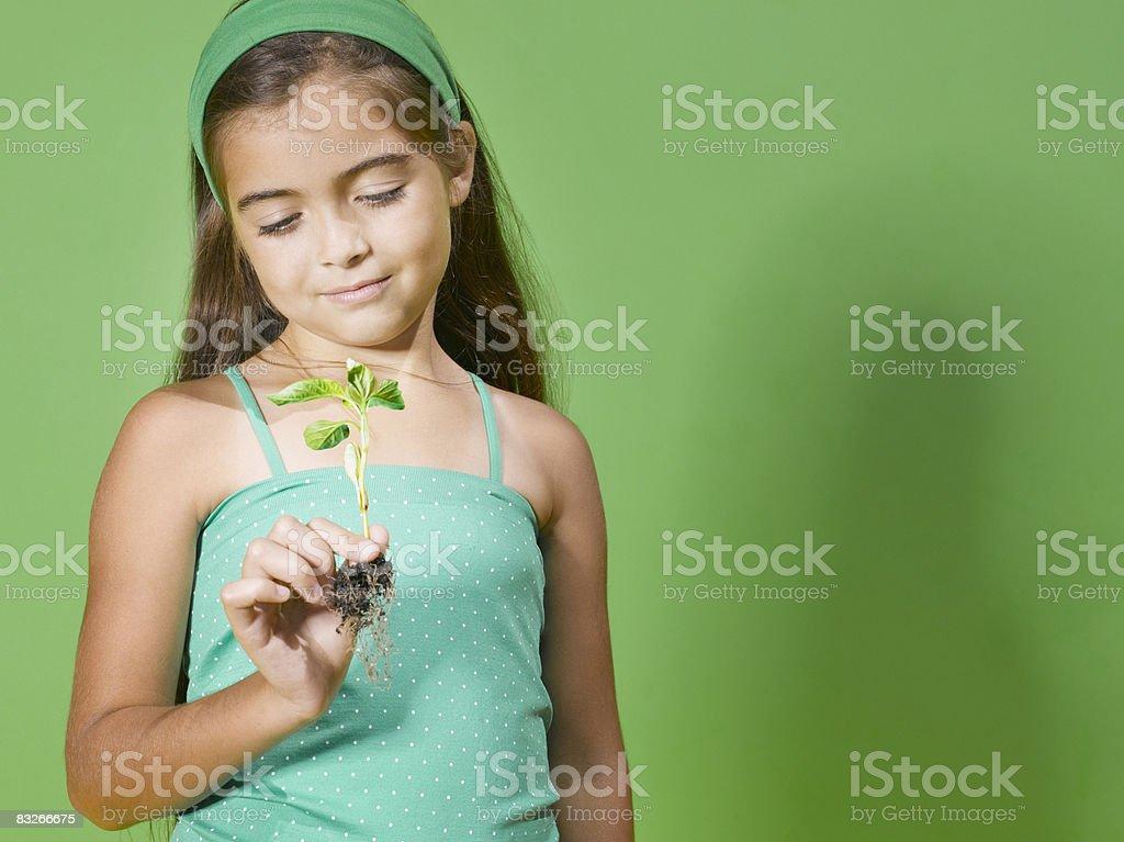 Giovane ragazza tenendo la piantina foto stock royalty-free