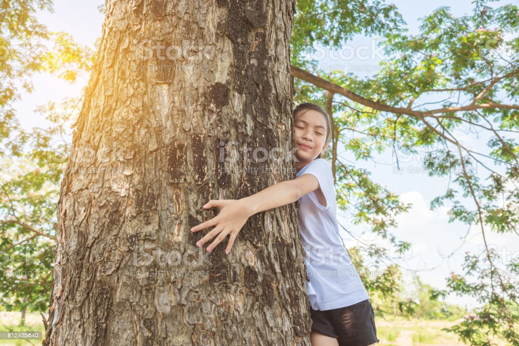Young girl hugging tree trunk in park stock photo