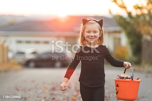 A cute young girl dressed as a black cat carries an orange bucket as she heads out for an evening of trick or treating in a suburban neighbhorhood.