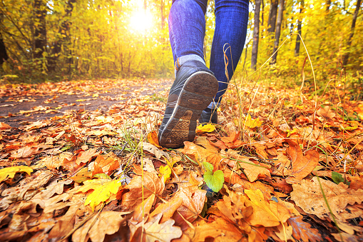 Image result for walking in autumn leaves girl
