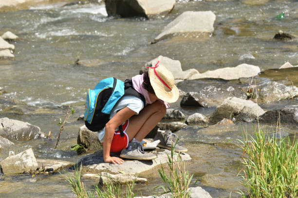A young girl in summer straw hat stands on a stone in the middle of a river stock photo