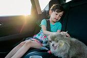 彼女のペットの犬と車の中で若い女の子