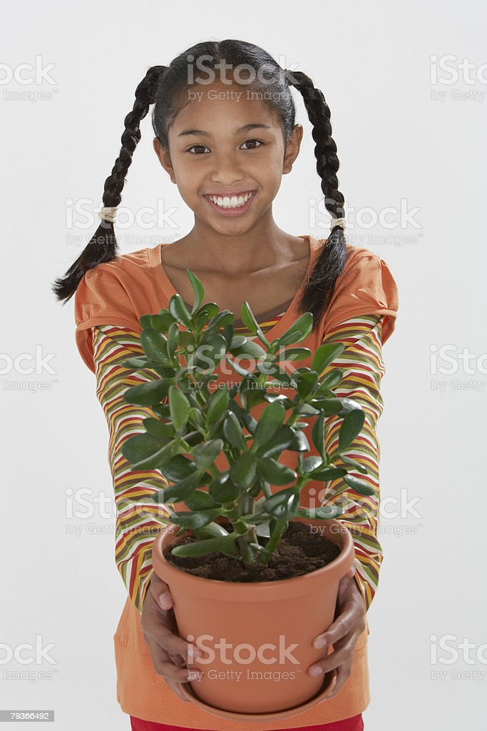 Young girl indoors holding potted plant royalty-free stock photo