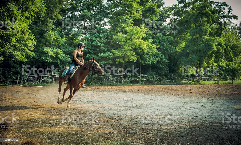 Young girl jockey and racehorse in training stock photo