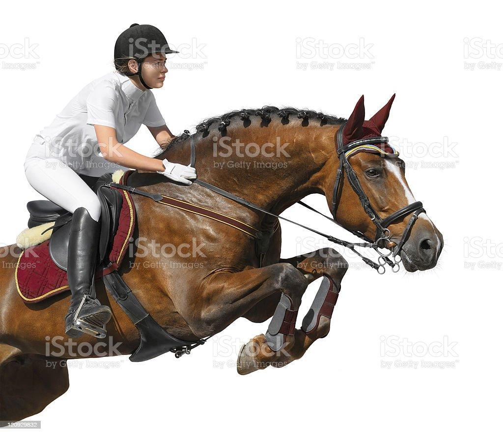 Junges Mädchen springen mit bay horse – Foto
