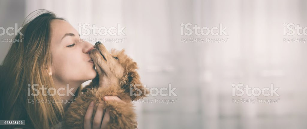 Young girl kissing her good friend dog . stock photo