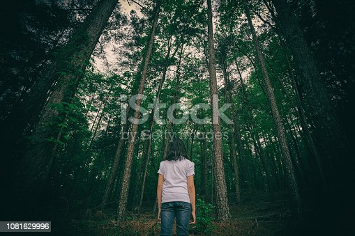 Young girl looking into a mysterious forest full of very tall trees.