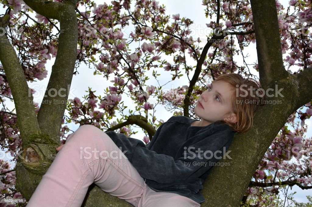 Young girl of the side sits in a magnolia tree foto stock royalty-free