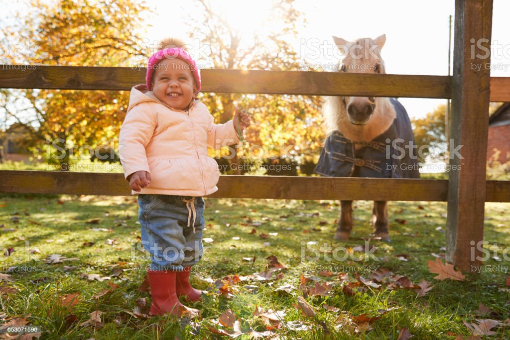 Young Girl On Autumn Walk Looking At Pony In Field stock photo