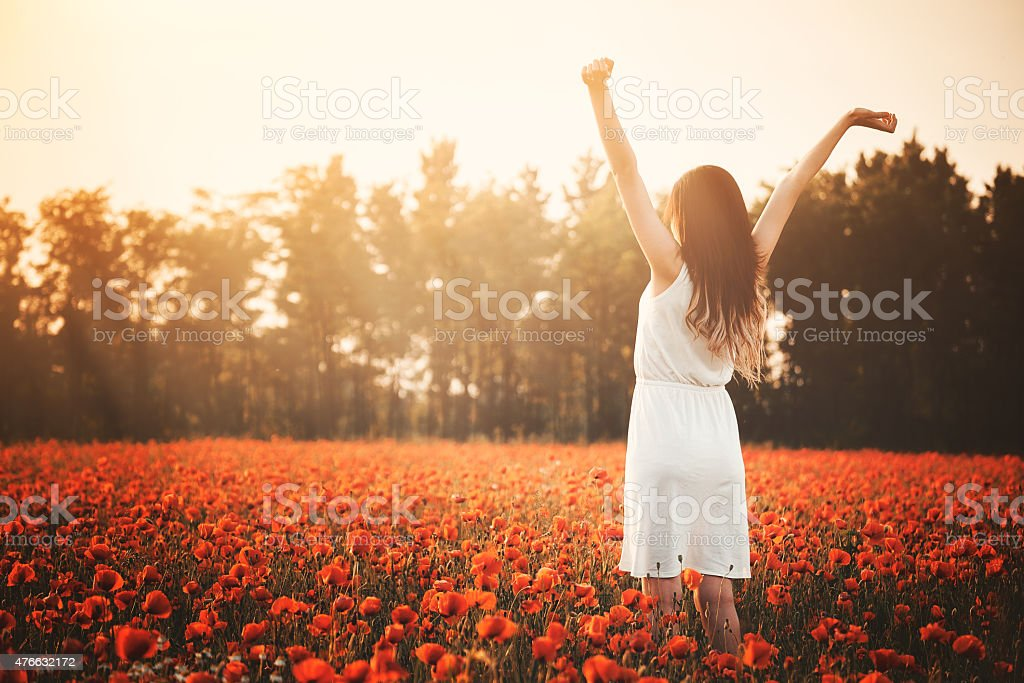 Young girl on poppy field hands up stock photo