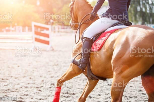 Young girl on sorrel horse galloping on her course picture id846068270?b=1&k=6&m=846068270&s=612x612&h=akqrfpc 0ubdz6izsxlzaabtt2u86g3vklyzc jabke=
