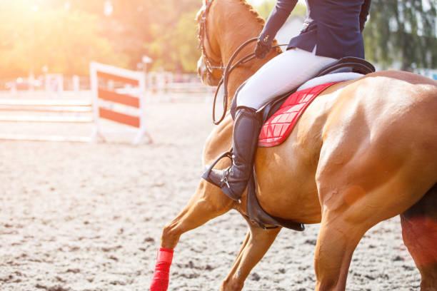 彼女のコースのギャロッピング スイバ馬の若い女の子 - 乗馬 ストックフォトと画像