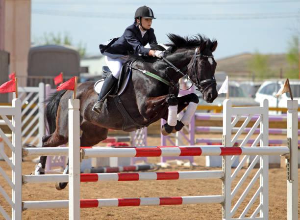 ung flicka på hästen på hoppning konkurrens - hästhoppning bildbanksfoton och bilder