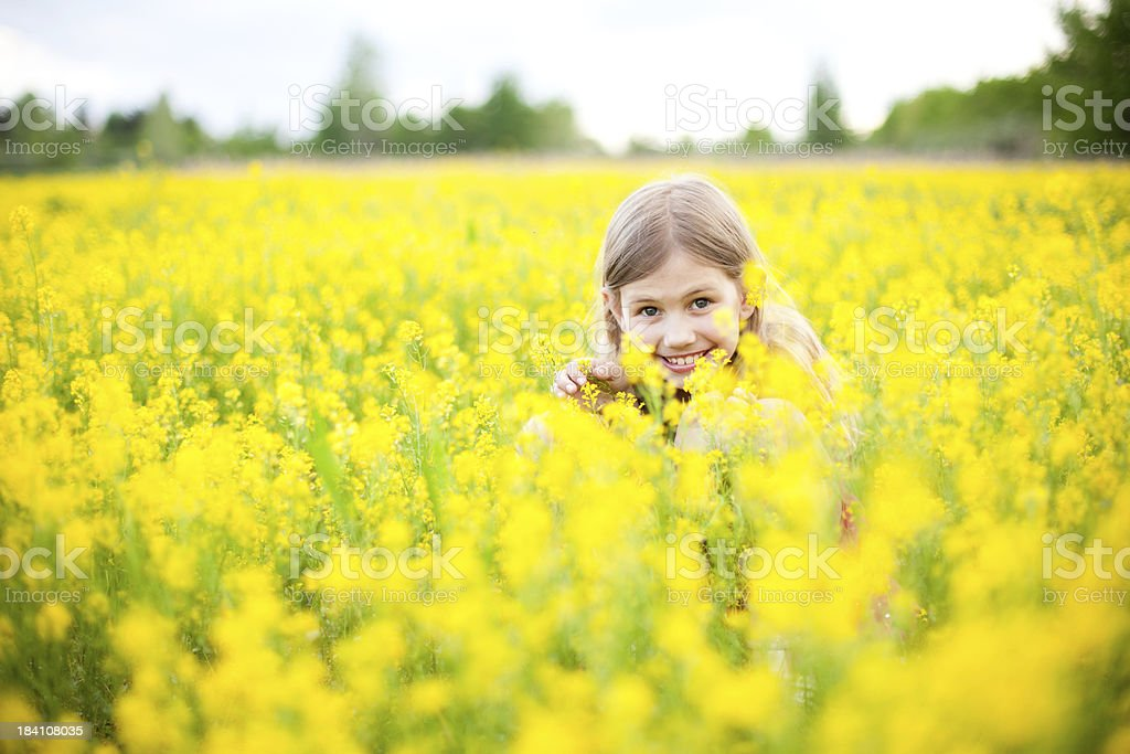 Young GIrl Peeking While Hiding in Flower Field stock photo