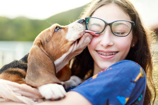 Young girl playing with the dog while giving him a bath A DSLR Canon photo of a young girl playing with the dog while giving him a bath. 12 13 years stock pictures, royalty-free photos & images