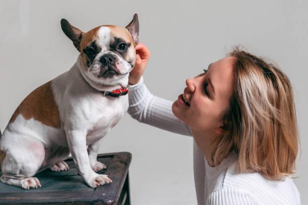junge Mädchen spielt mit ihrer lustigen französisch Bulldogge im Studio mit einem weißen Hintergrund – Foto