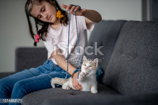 A young girl sits on a couch and plays with an orange and white cat.  She has a blue string and is trying to entertain the cat.  The young girl is wearing a white t-shirt and jeans.