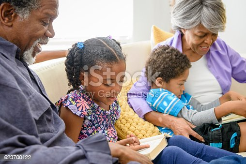 istock Young girl reading to African American grandfather on sofa 623700122