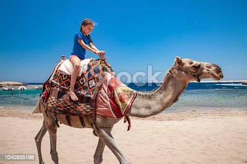 Young Girl Riding a Camel in Egypt.