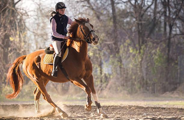 若い女の子の馬の乗馬 - 乗馬 ストックフォトと画像