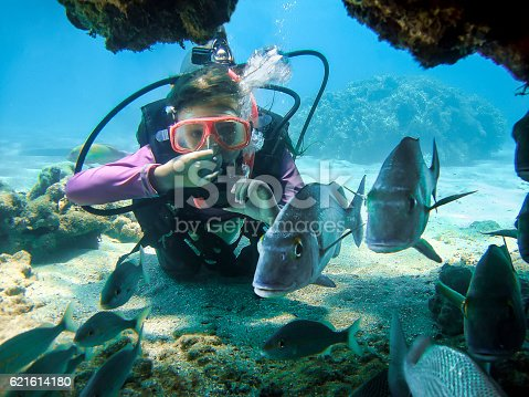 istock Young Girl Scuba Diving in Clear Water Behind Some Fishes 621614180